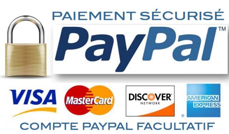 Pourquoi choisir paypal comme module de paiement pour sa for Paiement en ligne hotel