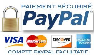 Pourquoi choisir Paypal comme module de paiement pour sa boutique en ligne ?